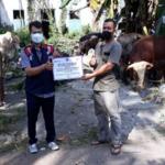Bantuan Hewan Qurban Yayasan Pondok Pesantren Assalafiyah Al Qur'aniyah Nusantara Brebes